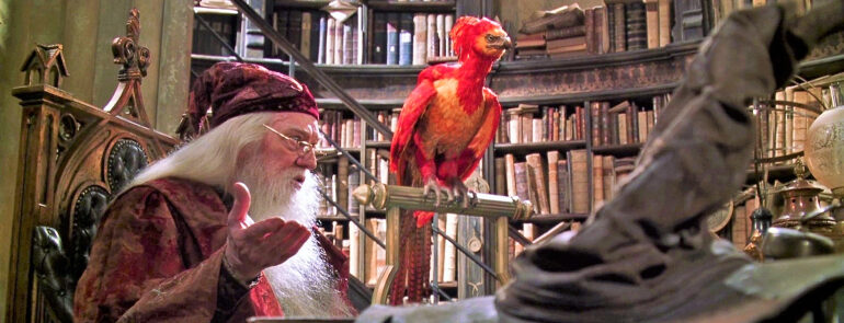 Dumbledore and Fawkes look ahead, inquiringly