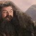 Hagrid Cheering